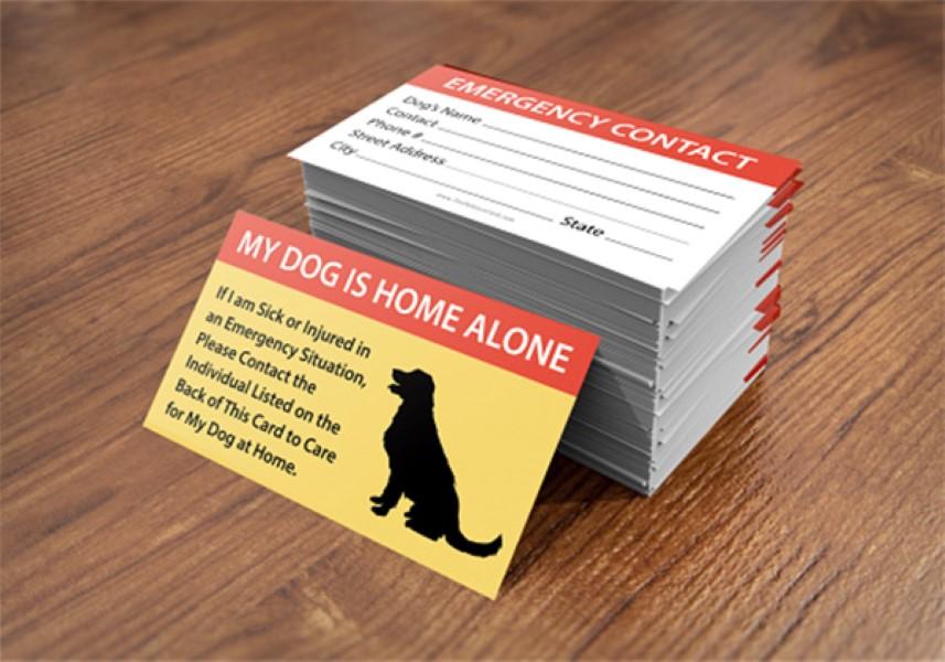 Pet Card