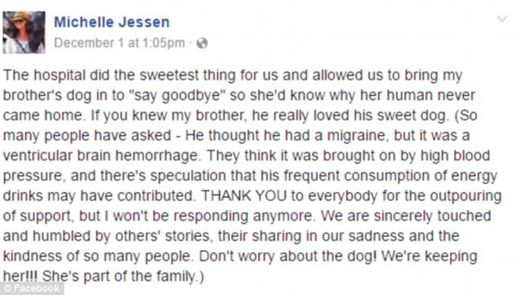 Dog Says Goodbye To Owner (1)