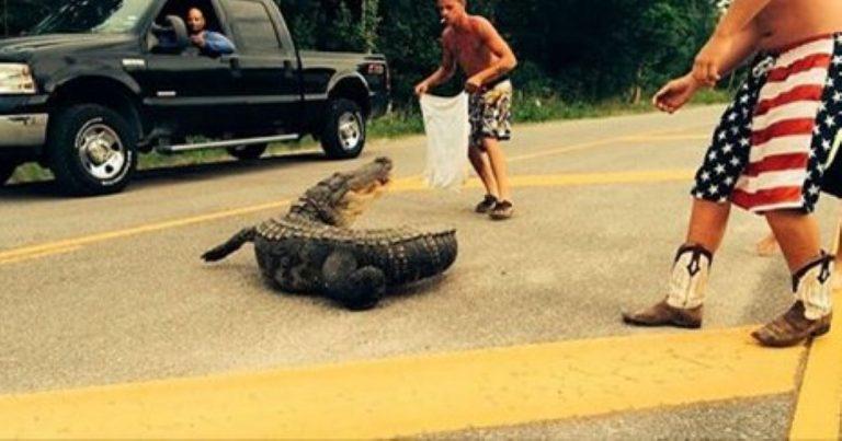 Alligator Bites Man In Shocking Attack Caught On Video!