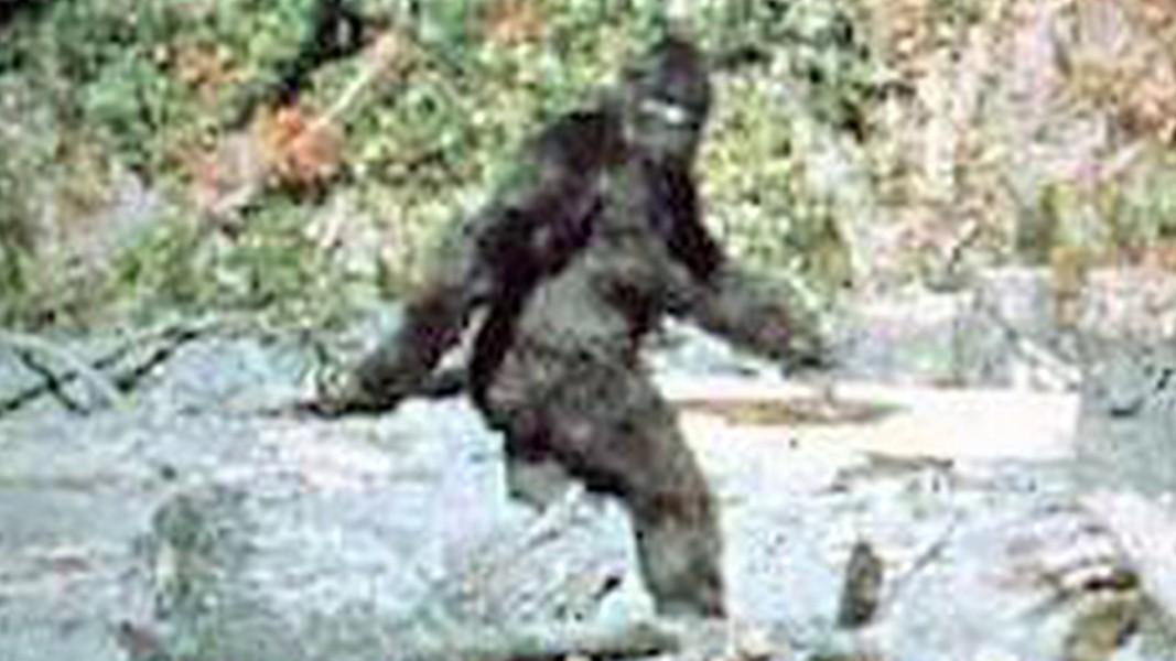 Bigfoot Love