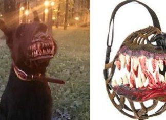 Halloween Muzzle