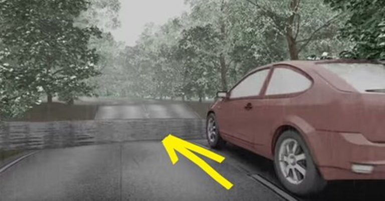 They Drive Through A Big Puddle – Find Out Why You Should Turn Around And Not Do THIS…
