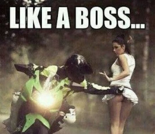 Motorcycle Skirt
