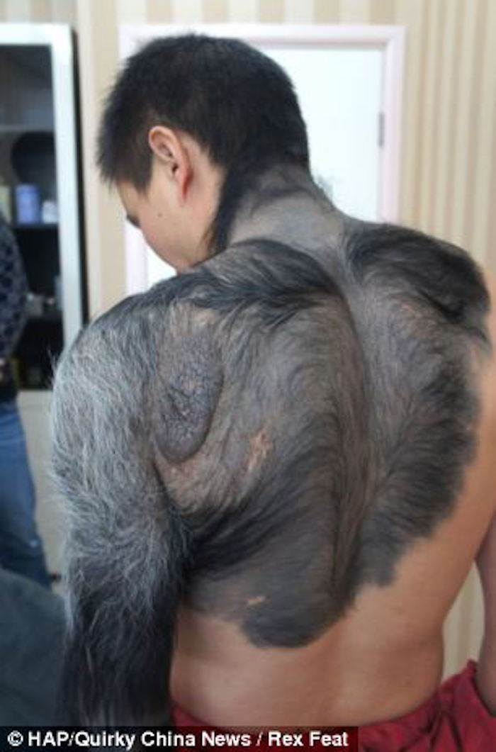 Furry Mole 1