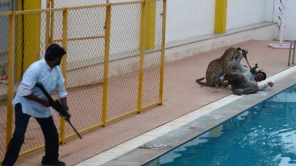 A Leopard Got Loose And Went BERSERK In A School Causing HAVOC…