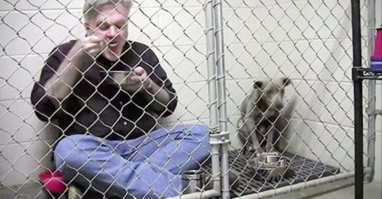 He Locks Himself In With An Abused Pit Bull – Now Watch When He Eats…