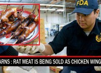 Rat Meat
