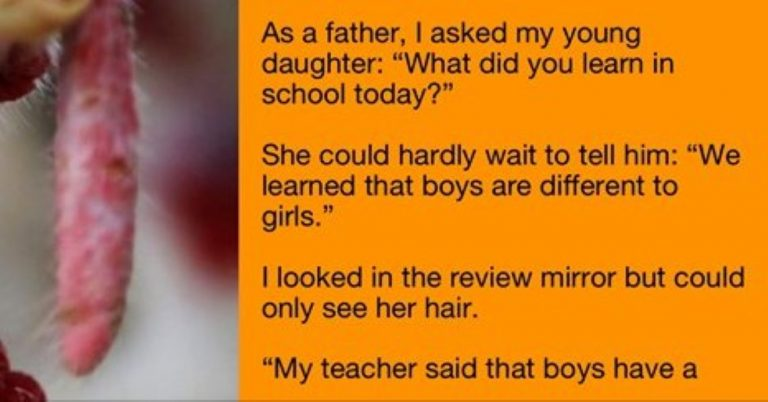 He Was Totally Shocked When He Saw What His Daughter Learned In School… It's PRICELESS!