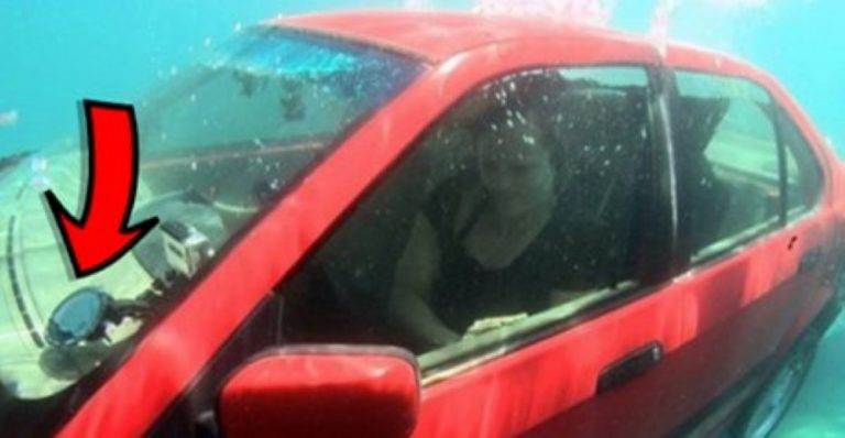 If You're In A Car That's Sinking, THIS Is What You Have To Do To Survive…
