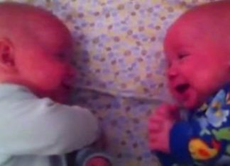 Babies Talking