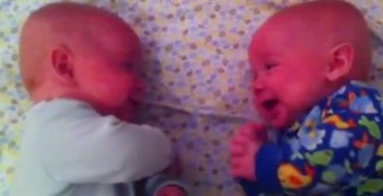 Mom Films Her Twin Babies Talking… Just Wait 'Til You Hear Their Conversation!
