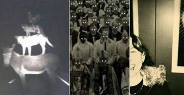 These 20 BIZARRE Photos Have No Right To Even Exist…
