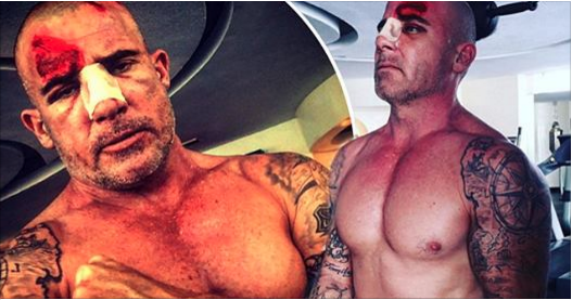 Prison Break Star, Dominic Purcell, 'Lucky To Be Alive' In Brutal Accident On Set Of Prison Break Season 5