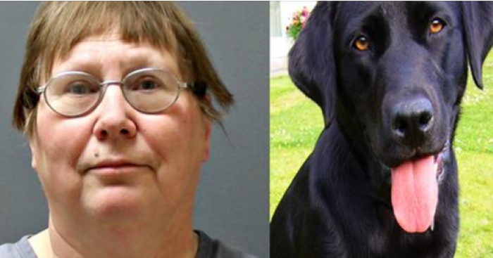 JUSTICE: After a Decade of Cruelty, 'Serial Dog Abuser' Gets Prision Sentence
