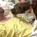 Dog Says Goodbye To Owner (1)